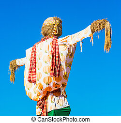Scarecrow in the blue sky