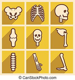 Set flat icons with long shadow human skeleton