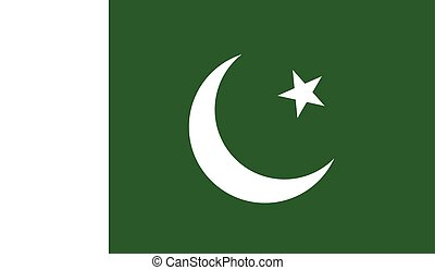 Pakistan flag image for any design in simple style