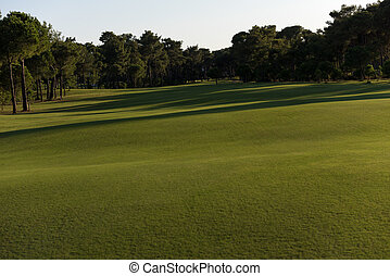 golf course on sunny day - golf course with fresh green...