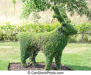 Deer frame topiary - Green deer frame topiary in a spring...