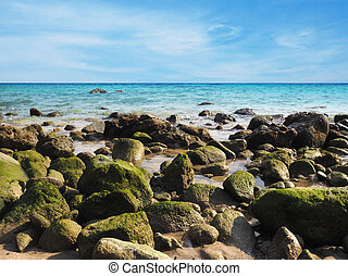 Green stones on the beach - rocks covered with green moss on...
