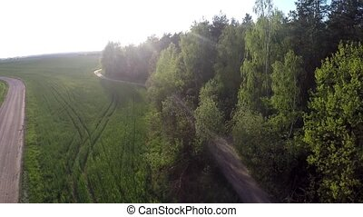 Flying over the forest and field.