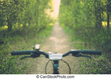 Blurred image of bike handle bar with narrow forest path and...