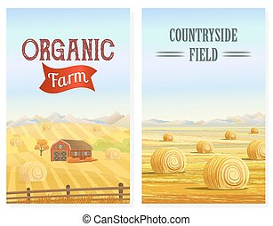 Countryside. Rural area. Fields with haystacks. Country...