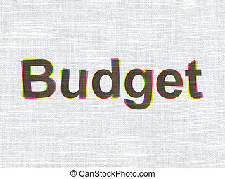Banking concept: Budget on fabric texture background
