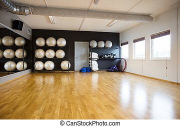 Pilate Balls In Gym - Pilate balls arranged in shelves at...