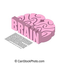 Brain structure of infographics. Brains headache human...