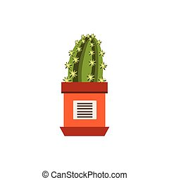 Cactus In A Pot