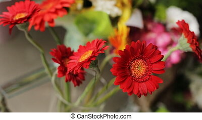 Red chrysanthemum flowers in glass bought-pot.