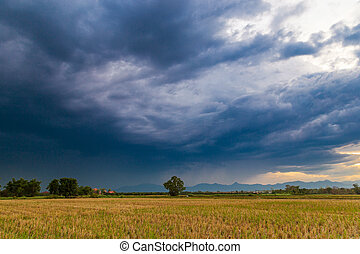 field and storm rainclouds