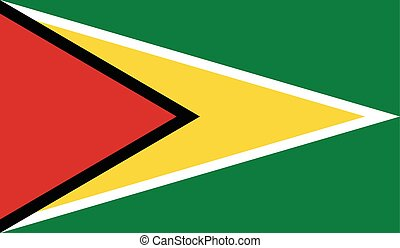 Guyana flag image for any design in simple style