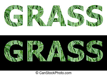 Textured Word Grass