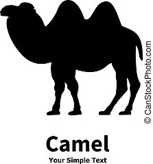 Silhouette of a Bactrian camel - Vector illustration of a...