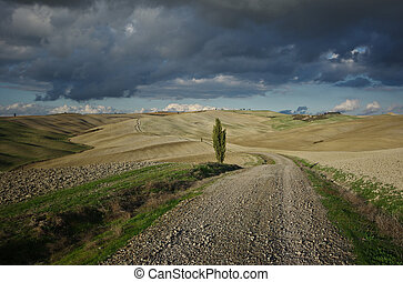 Landscape after rain - The famous Crete Senesi in autumn
