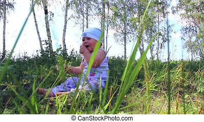 the baby crawls in a cereal field in a Sunny day
