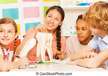 Students studying dental structure at the lesson - Four...