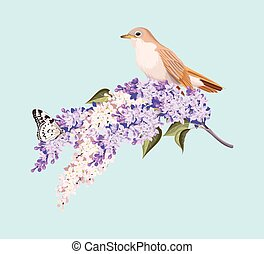 Bird and branch of lilac - Vector illustration of...