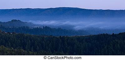Misty Mountain Valley at Night