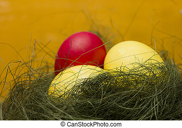 Easter colored eggs in green grass on yellow background