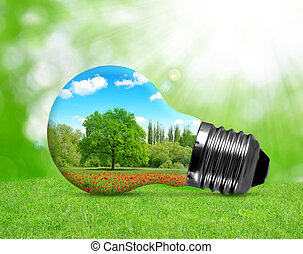 Eco bulb in grass Environment or energy concept background
