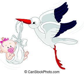 gólya, és, csecsemő