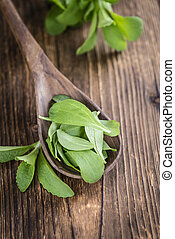 Stevia leaves selective focus - Portion of Stevia leaves...