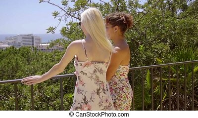 Stylish young women standing overlooking a city - Two...