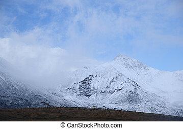yukon landscape - tombstone mountain landscape in yukon