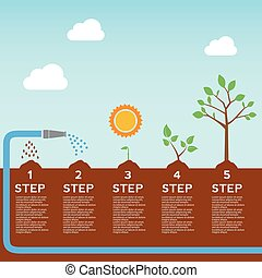 Timeline infographic of planting tree process, business...
