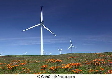 White Power Generating Wind Turbines, Wildflowers