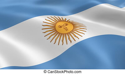 Argentina flag in the wind. Part of a series.
