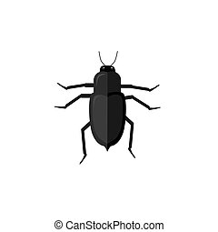 Protaetia May Bug Insect Design Flat - Protaetia may bug...