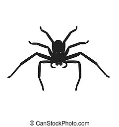 Spider Icon Vector - Spider icon logo isolated on white...