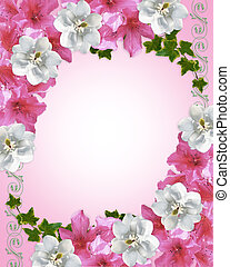 Floral border azaleas and magnolia - Image and illustration...