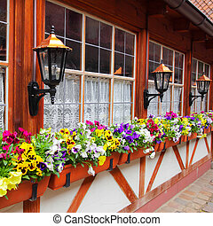Windows with flowerpots - Windows of old house with flowers...