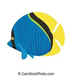 Surgeon fish icon, cartoon style - Surgeon fish icon in...