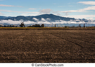 ploughed and harrowed field - closeup of ploughed and...