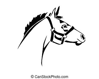 Foal - Stencil horse's head on a white background