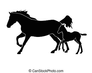Mare and foal - Silhouette of horse with a foal on a white...