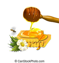 honey - Illustration, bee on flower and honeycomb with honey