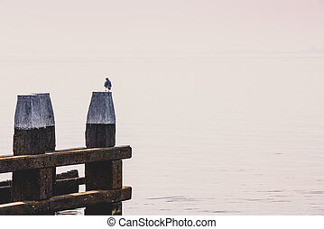 Northern Sea landscape: still water and wooden pier