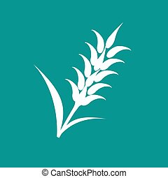 Ears of Wheat, Barley or Rye visual graphic icons, ideal for...