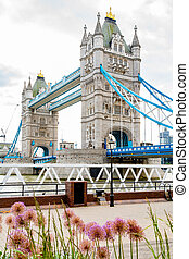 Tower Bridge London, England - View The Tower Bridge from...