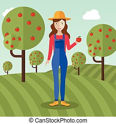 Farmer woman  collecting apples.
