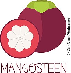 Mangosteen illustrator vector - Mangosteen fruit illustrator...