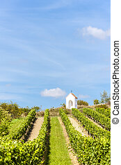 wayside near Hnanice with vineyard, Southern Moravia, Czech...
