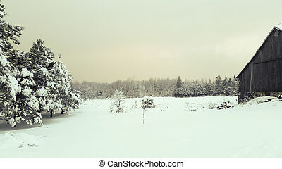 Rural Winter Countryside View