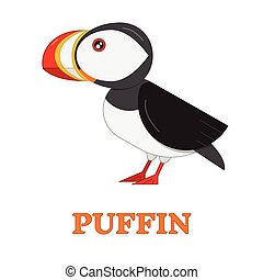 Puffin Sea Bird - Puffin sea bird. Flat design nothern...