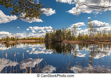 Lake landscape in summer and blue sky